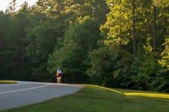 Cyklist på vägen till och med skog på solnedgången royaltyfri fotografi