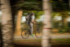 Cyklist - panorera effekt Royaltyfri Fotografi