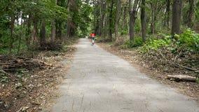 Cyklista podnosi up prędkość w czerwonym błękita mundurze na żółtym roweru chodzeniu