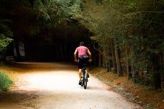 Cyklista w parku obrazy stock