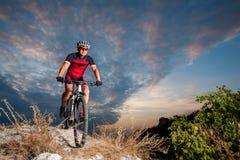 Cyklisten på mountainbiket springer sluttande i naturen arkivbilder