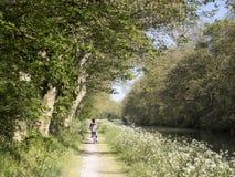 Cyklister i kanalen du midi Royaltyfri Bild