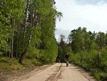 Cyklister i skog fotografering för bildbyråer