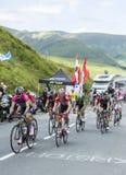 Cyklister på sänkan de Peyresourde - Tour de France 2014 Arkivbilder