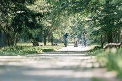 Cyklister på vägen i parkerar på en sommardag arkivfoton