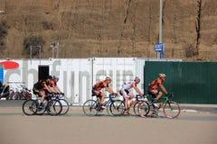 Cyklister rider cyklar royaltyfri foto