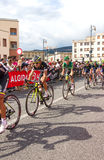 Cyklister som konkurrerar i Postgirot D'Italia 2014 Arkivfoton