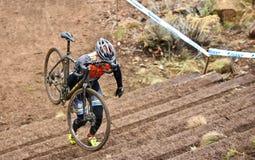 Cyklistklättringtrappa på det arga korståget 2016 i krökningen Oregon Arkivfoton