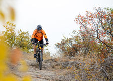 Cyklistridningcykel på den härliga Autumn Mountain Trail Royaltyfria Bilder