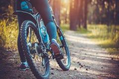 Cyklistridningmountainbike i skogen arkivbilder