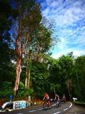 Cyklistrittcykel på vägen arkivfoton
