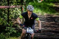 Cyklistritter till och med skogen Fotografering för Bildbyråer
