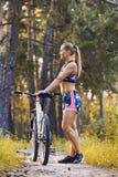 Cyklisty kolarstwa rower górski na Sosnowym lasowym śladzie Zdjęcia Royalty Free