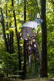 cyklisty lasu przejażdżki Obraz Royalty Free