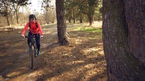Cyklisty sporta Kaukaska kobieta jedzie wzd?u? ?ladu w lesie na wiosna s?onecznym dniu Jecha? sportowiec dziewczyny na a zdjęcia royalty free
