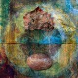 cyklu liść kamień ilustracja wektor