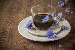 Cykorii herbata od cykorii i kwiaty Obraz Stock