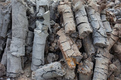 Cylindrical crack soil Stock Image