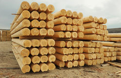 Cylindrical logs Royalty Free Stock Photos