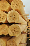 Cylindrical logs Stock Images