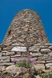 Cylindriskt torn av iakttagelse i Vernazza royaltyfria foton