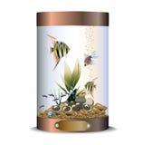 Cylindrowy brązowy akwarium ilustracja wektor