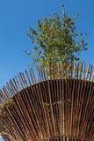 Cylindryczna Bambusowa struktura z Lotosową rośliną: Wietnam architekt Obrazy Royalty Free