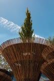 Cylindryczna Bambusowa struktura z Lotosową rośliną: Wietnam architekt Zdjęcie Royalty Free