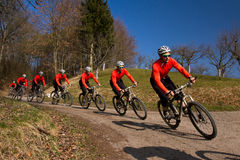 Cyling on a mountain bike. Series of cycling on a mountain bike Royalty Free Stock Photo