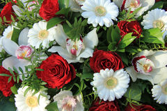 Cymbidium orchids, red roses and white gerberas Royalty Free Stock Photos