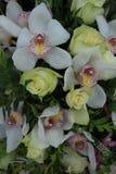 Cymbidiumorchideeën en witte rozen in bruids boeket Stock Foto
