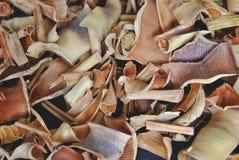 Cymbopogon Imagenes de archivo
