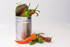 Cyna chillies Zdjęcie Royalty Free
