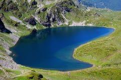 Cynaderki jezioro Zdjęcia Royalty Free