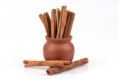 Cynamon, kasje (Cinnamomum spp ) zdjęcie stock