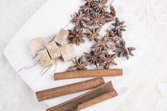 Cynamonowi kije, anyż grają główna rolę i kawałki brown cukier kłamają na białym brodawka spodeczku Obrazy Stock
