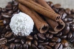 Cynamonowi kije nad coffe fasolami zdjęcia stock