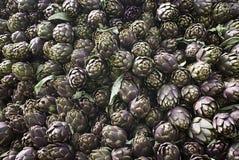 Cynara cardunculus dei carciofi, beckground Immagine Stock