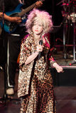 Cyndi Lauper Live Performance. Cyndi Lauper sings during a live musical performance Stock Images