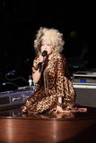 Cyndi Lauper Live Performance. Cyndi Lauper sings during a live musical performance Stock Image