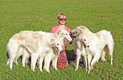 Cynologist con i cani del borzoi del thoroughbred Fotografie Stock Libere da Diritti