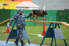 Cynologists με τα σκυλιά στη Μόσχα Στοκ Εικόνα