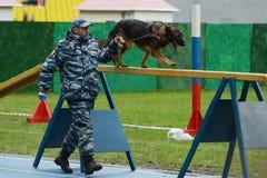 Cynologists com os cães em Moscou Imagens de Stock