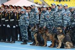 Cynologists com os cães em Moscou Imagem de Stock Royalty Free