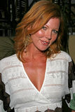 Cynthia Basinet Obrazy Stock