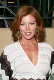 Cynthia Basinet Stock Photography