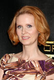 Cynthia Nixon royalty free stock photo