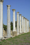 Cypern forntida salamier Royaltyfri Fotografi