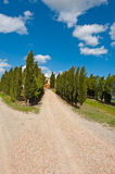 Cypress Alley Stock Images
