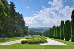 Cypress alley in Kislovodsk resort Park. Kislovodsk resort Park is located at an altitude 800-1360 meters above sea level. The Park area is 948 hectares royalty free stock images